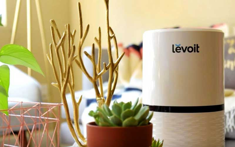 LEVOIT LV-H132 Purifier review
