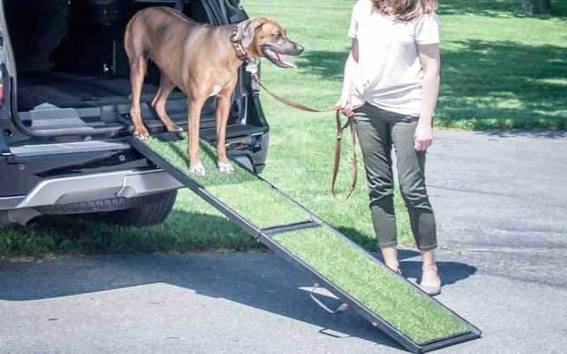 dog ramp for truck side door review