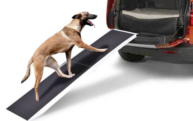 Best Dog Ramp for SUV, Car 2020 – Review & Complete Guide