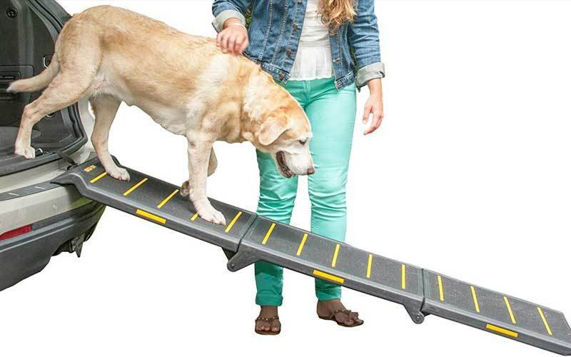 best dog ramp for car review