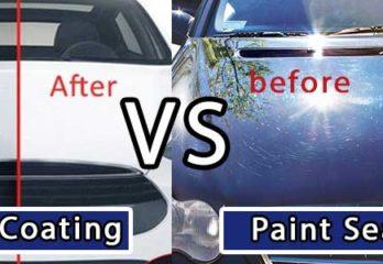 ceramic coating vs paint sealant