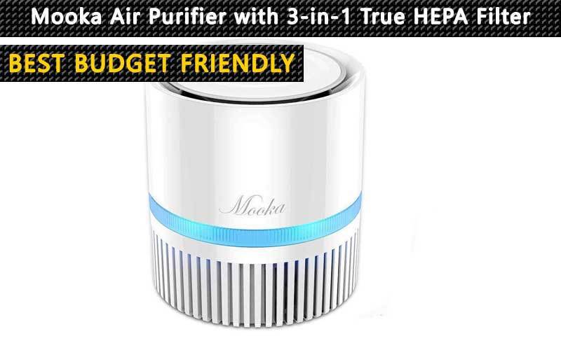 best budget friendly home air purifier review