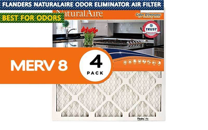 Best Air Filter For Odors review